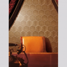Hex Ceramic Wall Tiles