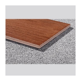 Flooring Tiles for Inside Hall Decoration